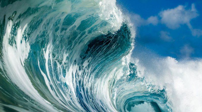 Los océanos safacones globales