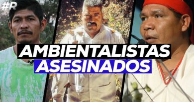 Los ambientalistas, defensa mortal