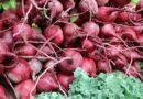 La remolacha roja y su poder curativo