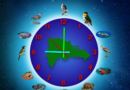 El reloj de la extinción