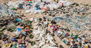 La basura desechos mortales